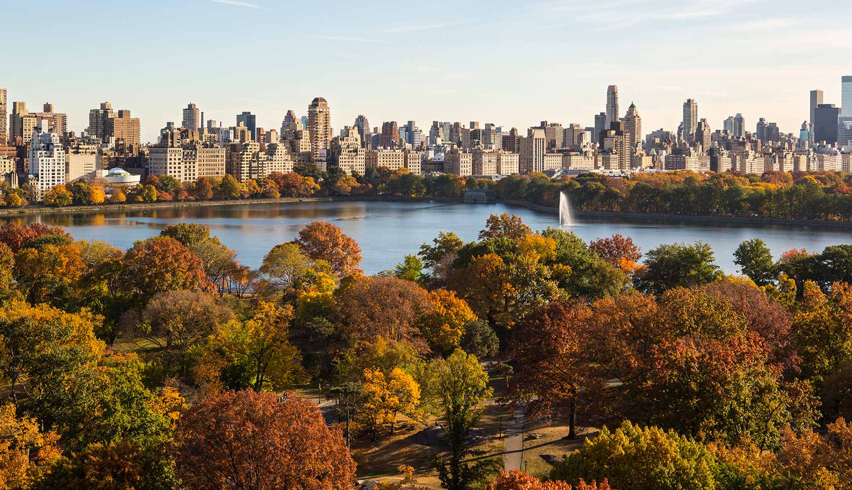 guide to central park new york city