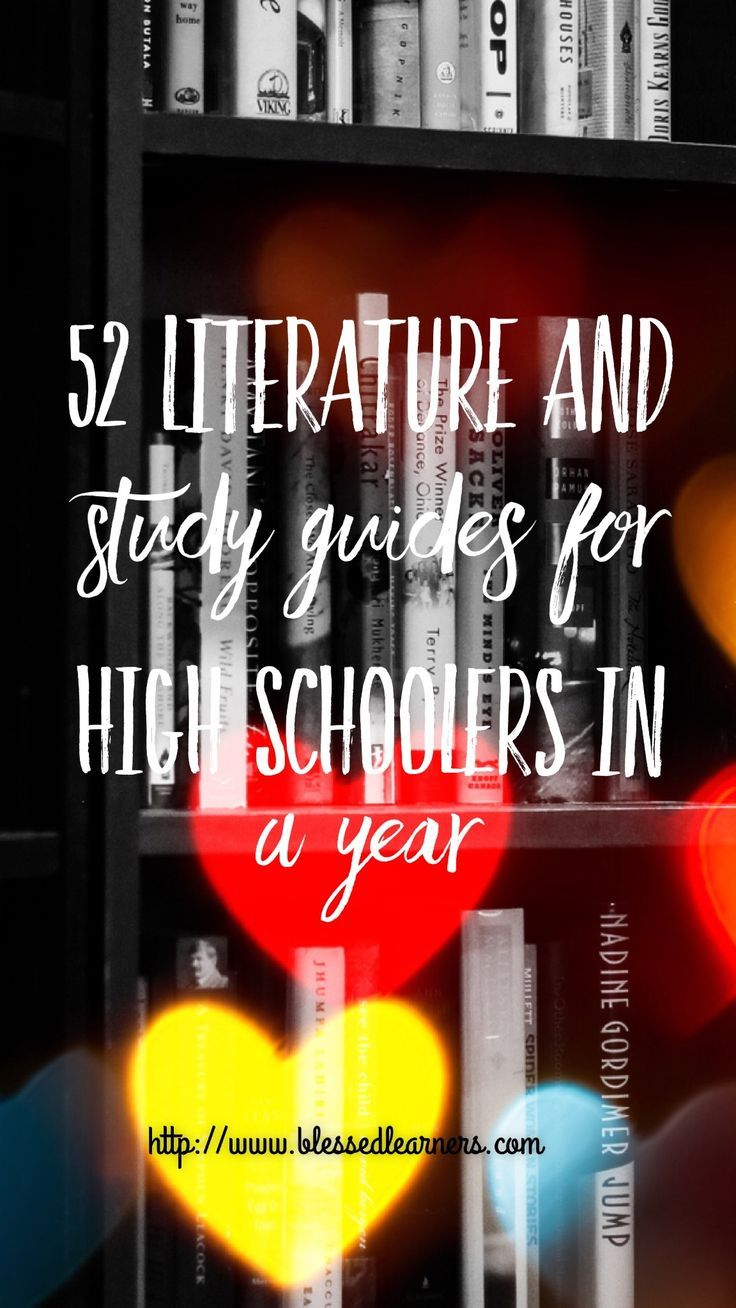 literature study guides high school