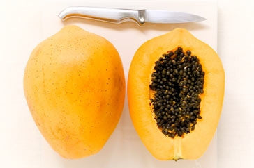 papaya cultivation guide in india pdf